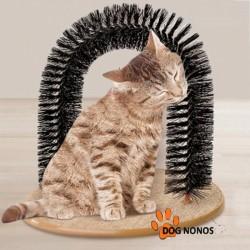 Arche de massage