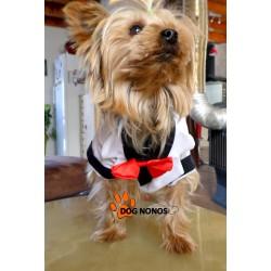 Costume petit chien BLANC