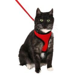 Harnais chaton rouge noir