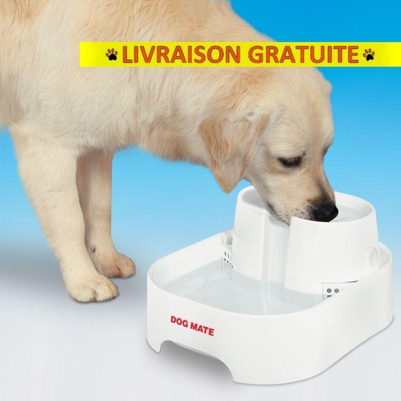 Fontaine à eau Dog Mate 6 L pour chien et chat