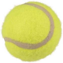 Lot de 3 balles de tennis D6cm