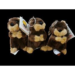 Lot de 3 Marmottes Lascar...