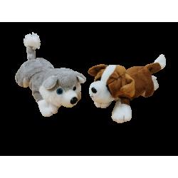 Lot de 2 peluches chien CP