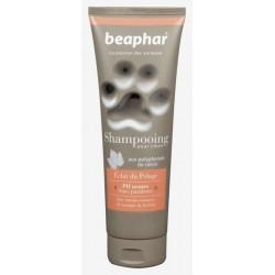 Shampooing éclat du pelage 250ml BEAPHAR
