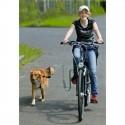 Doggy Sprinter